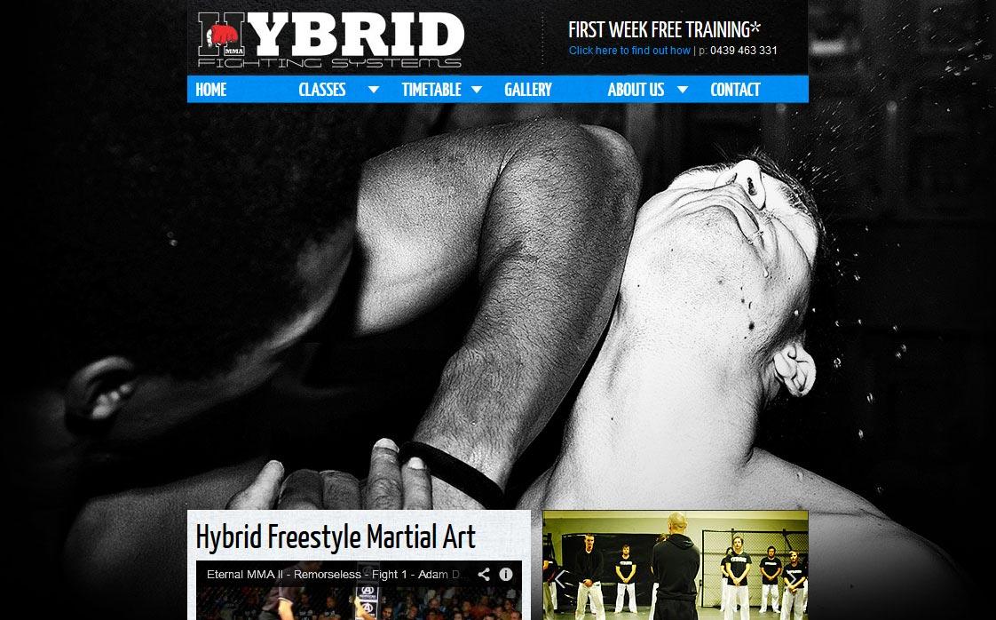 hybridfightingsystems