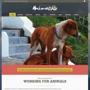Working for Animals